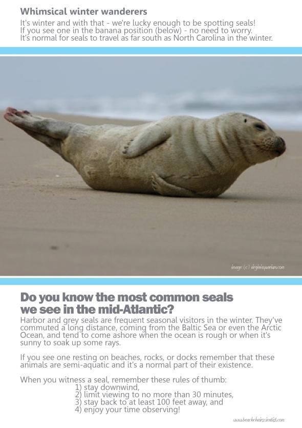 BCS_Seals_large